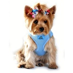American River Ultra Choke Free Dog Harness from BowWowsBest.com | Dog Harness, Dog Designer Harness, Dog Clothes, Dog Designer Clothes, Dog Accessories, Dog Couture, Dog Formal Wear