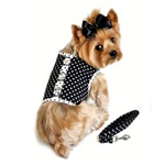 Black and White Polka Dot Dog Harness