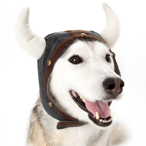 Viking Helmet Dog Hat From Bowwowsbest Com Dog Caps Hats