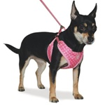 EasyGO Dotty Dog Harness from BowWowsBest.com | The Best Dog Harnesses, Designer Dog Harnesses, Dog Harness, Dog Clothing, Dog Clothes, Designer Dog Clothing, Dog Apparel, Dog Accessories, Dog T-Shirts, Dog Tanks