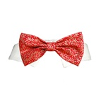 Holly Dog Bow Tie | Dog Collars, Designer Dog Clothes, Designer Dog Formal Wear, Dog Clothing, Designer Dog Harnesses, Dog Leads, Dog Beds, Dog Leashes and Dog Accessories from BowWowsBest.com