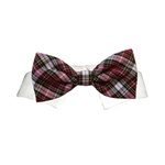 Jeremy Dog Bow Tie | Dog Collars, Designer Dog Clothes, Designer Dog Formal Wear, Dog Clothing, Designer Dog Harnesses, Dog Leads, Dog Beds, Dog Leashes and Dog Accessories from BowWowsBest.com
