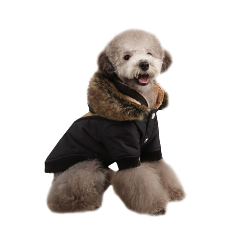 Soothing Hooded Dog Coat From Dog Coats