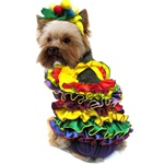 Calypso Queen Dog Costume from BowWowsBest.com | The best in designer dog costumes, dog clothes, designer dog clothes, dog clothing, dog dresses, dog beds, dog harnesses, designer dog beds