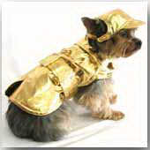 Gold Lame Coats - Sizes to fit 1 thru 70 pounds