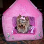 Sophie's Princess Dollhouse