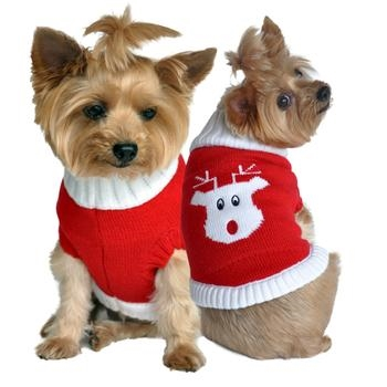 Red Rudolph Holiday Dog Sweater Dog Sweaters Big Dog Clothes