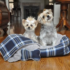 Blue Plaid Flannel Dog Bed, dog beds, small dog beds, dog donut beds
