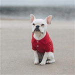 Solid Dog polos, dog shirts, big dog clothing