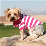 Striped Dog polos, dog shirts, big dog clothing