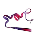 American River Ombre Leash -  Raspberry Sundae, dog leads