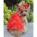 Red Satin Dog Dress, Christmas dog dresses, Christmas dog attire, formal dog attire