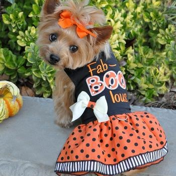 Fab Boo Lous Dog Costume