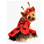 Lady Bug Fairy Dog Costume