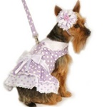 Lavender Polka Dog Dress