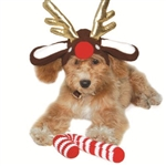 Reindeer Dog Hat, Dog caps, dog hats, Halloween costumes for dogs,