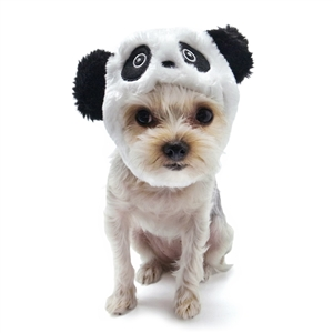 Panda Dog Hat from BowWowsBest.com | Dog caps, hats and visors, Halloween dog costumes