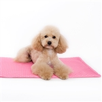 iCool Dog Mat Gel