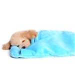 Blanket Dog Bed, beds for dogs, snuggle beds for dogs, donut beds for dogs, dog beds, BowWowsbest.com, small dog beds, pet beds, cat beds, blanket beds for dogs, dog blanket beds, dog blankets