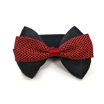 EasyBOW Gentleman 5 Dog Collar Bow