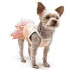 Citrus Dog Dress, dog clothes, dog dresses,  casual dog dresses, fancy dog dresses, bowwowsbest.com