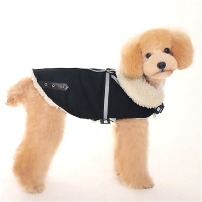 Military Harness Dog Coat from BowWowsBest.com | Dog Sweaters, Dog