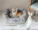 Hello Doggie Divine Dog Bed, snuggle beds for dogs, donut beds for dogs, BowWowsbest.com, pet beds, cat beds, Hello Doggie