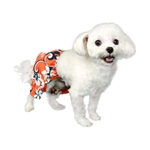 Cayman Dog Swim Trunk, Dog Swimsuits