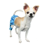 Shark Dog Swim Trunk, Dog Swimsuits