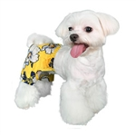 Aruba Dog Swim Trunk - Dog Swimsuits/Dog Swimwear - BowWowsBest.com | Dog Swimsuits, Designer Dog Swimsuits, Dog Swimwear, Designer Dog Swimwear, Dog Clothes, Dog Clothing, Designer Dog Clothes, Designer Dog Clothing