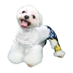 Sebastian Dog Swim Trunk - Dog Swimsuits/Dog Swimwear - BowWowsBest.com | Dog Swimsuits, Designer Dog Swimsuits, Dog Swimwear, Designer Dog Swimwear, Dog Clothes, Dog Clothing, Designer Dog Clothes, Designer Dog Clothing