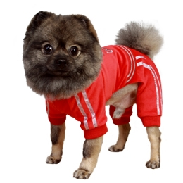 Woof Dog Jumpsuit, BowWowsBest.com, Dog Jumpsuit, dog winter clothing, jumpsuits for dogs, dog pants, pants for dogs, Pooch Outfitters