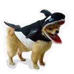 Whale eats dog! Guaranteed to make you laugh. Fits Small to Medium Dogs