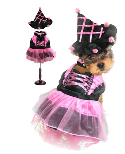 ... designer dog costumes · Larger Photo Email A Friend  sc 1 st  BowWowsBest & Pink Pompom Witch Dog Costume from BowWowsBest.com   The best in ...